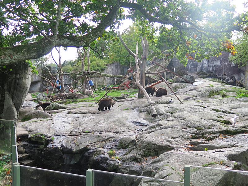 skansen djurgården stockholm